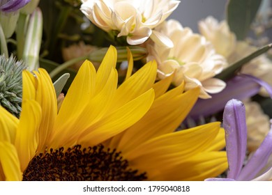 Yellow smooth petals on a sunflower bouquet
