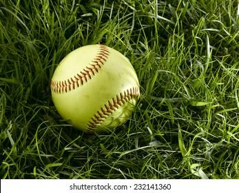 Yellow Softball sitting in green grass