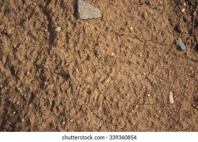 yellow soil