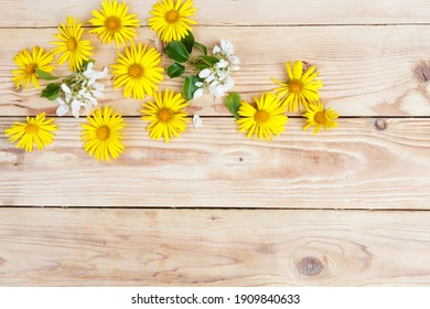 yellow spring flowers are laid out on a wooden background. Top view.