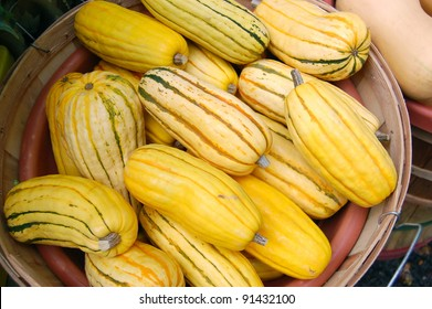Yellow Squash on Display