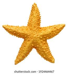 Yellow starfish souvenir, handmade decoration, isolated on white background