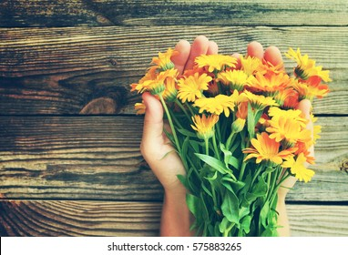 Yellow summer flowers in female hands against a wooden surface. Bouquet from a marigold. Calendula flowers. Festive bouquet