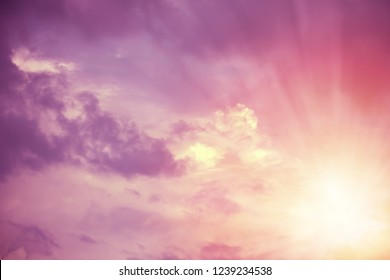 Yellow sun beams lighting pink and violet fluffy clouds in sky. For background and wallpaper