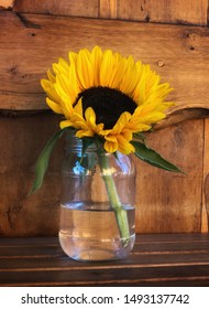 Yellow sunflower in full bloom in a jar of water on a wooden table against a wooden background