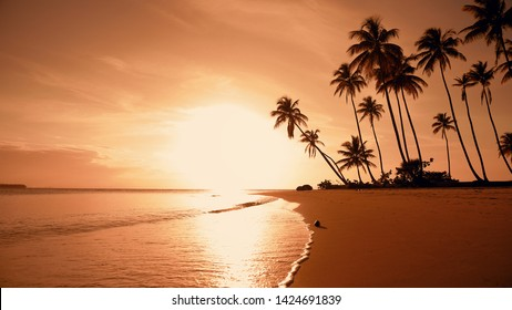 Yellow sunset at the beach. Palm trees sunset background. Waves, sky and yellow sun. Amazing island palms beach background. Punta Cana evening. The sun resort vacation. Japan nature sunset landscape