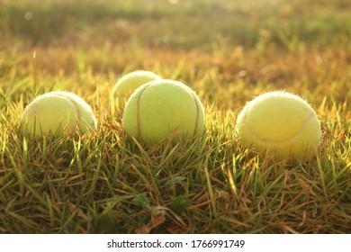 Yellow tennis balls on the grass field closeup sunset