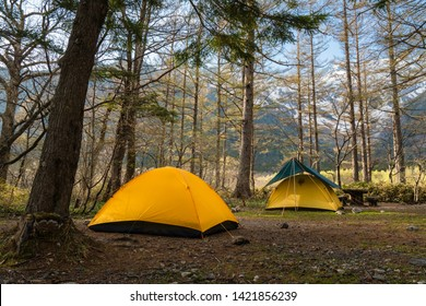 Yellow Tent with Blue Rain Cover in Kamikochi Campsite under Pine Trees with Background of Snow Mountain under Clear Blue Sky in Spring Season. For Adventure Traveler who Love Trek, Hike, and Nature
