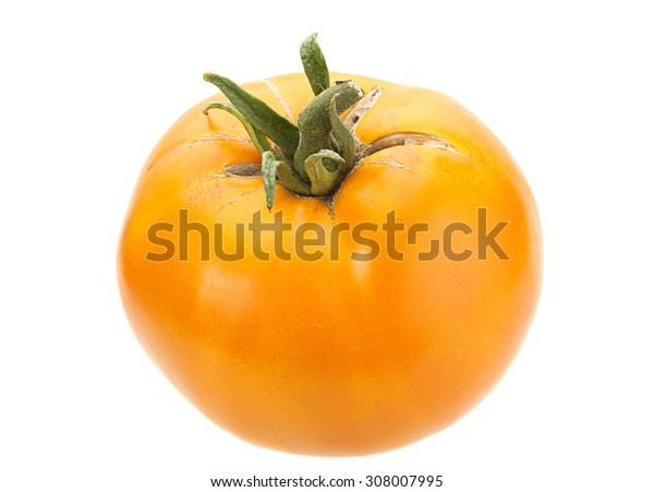 Yellow tomato vegetable closeup isolated on white background