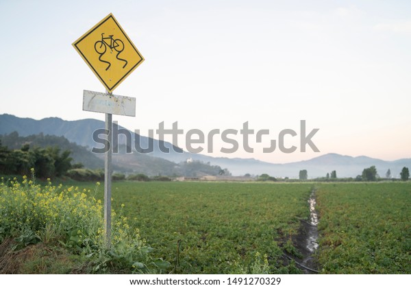 Yellow traffic curves sign for cyclists next to a green organic sown field with mountains and clouds in the background early in the morning.