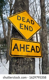 Yellow triangular Dead End Ahead street sign attached to a tree