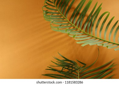 Yellow tropical background with leaves