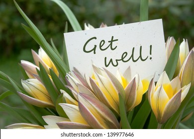 yellow tulips and card with lettering get well/flowers/tulips