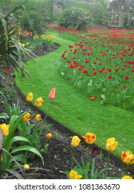 Yellow tulips edge winding grass pathway through masses of red tulips disappearing into distance