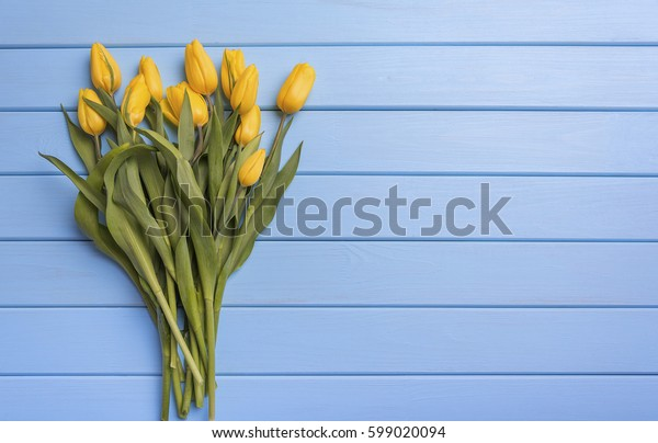 Yellow tulips on blue boards. Place for placing of your text.