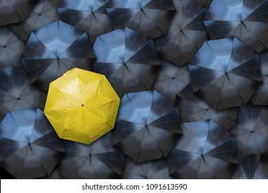 A yellow umbrella stands out against a crowd of black ones. Individuality and leadership concept.