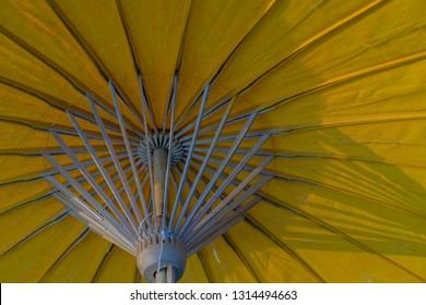 Yellow umbrella Wood