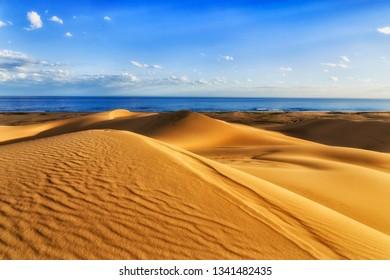 Yellow untouched sand dunes under wind erosion on Stockton beach of Pacific coast in Australia facing open sea under blue sky.