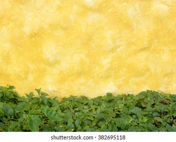 Yellow wall background with green leaves