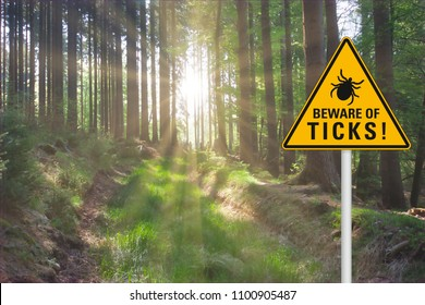 """Yellow warning sign """"beware of ticks"""" at a sunny clearing in the forest"""