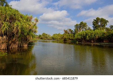 Yellow water billabong landscape - Cooinda, Kakadu National Park, Northern Territory, Australia - November 2015