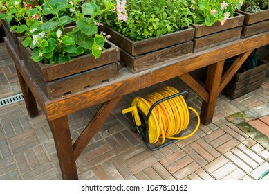 yellow watering hose in a roll under a table in a greenhouse with flowers