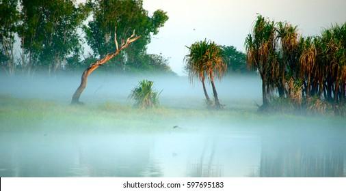 yellow waters billabong australia kakadu northern territory outback lake river mist sunrise dusk dawn sunset