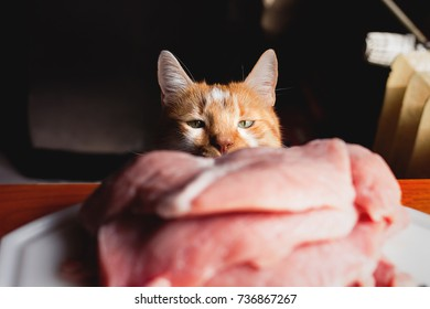 Yellow and white cat peeking on the table, looking at some delicious raw meat in the plate