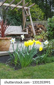 Yellow and white daffodils in a garden border in front of a patio with a swing bench