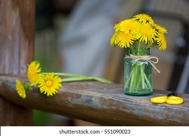 Yellow wildflowers in a glass jar. A bouquet of dandelions.