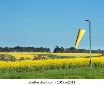 Yellow wind sock against a blue sky with yellow canola fields