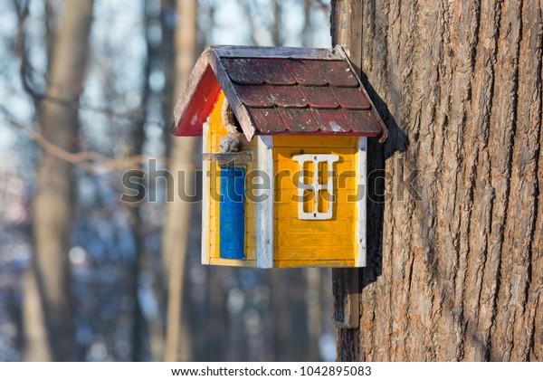 yellow-wood-birdhouse-blurred-background
