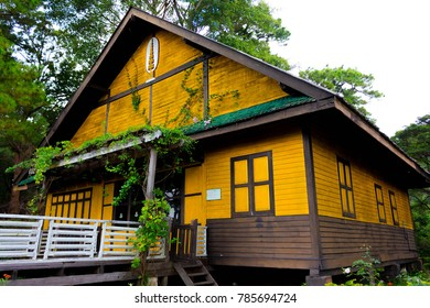 Yellow wooden house in the forest, he has a square shape.