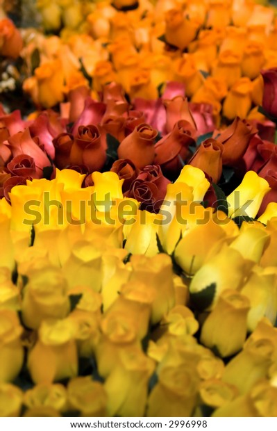 Yellow wooden roses with red roses in the background - shallow depth of field