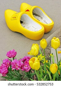Yellow Wooden Shoes - A pair of Dutch wooden shoes with tulips in the foreground