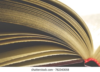 yellowed pages of an old book, retro toned
