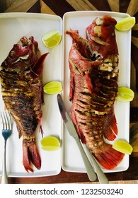 Yellowfin red snapper  grilled