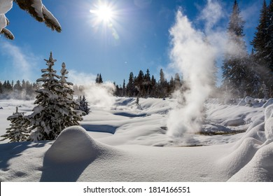 Yellowstone hot springs in winter. Beautiful scene of forest in winter sun and contrast between hot springs and winter cold.