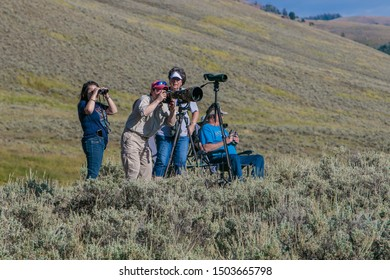 Yellowstone National Park, 8/23/2019: Wildlife watchers are using their optical equipment to watch animals at Lamar Valley.