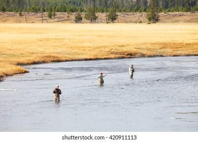 Yellowstone National Park, WY, USA Oct. 1, 2015 3 senior retired men fly fishing in Yellowstone National Park.