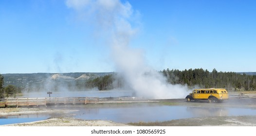 YELLOWSTONE NATIONAL PARK, WYOMING - JUNE 26, 2017: A Historic Yellow Bus at Aretsia Geyser in the National Park. The fleet of vintage vehicles has been operating since  1936.