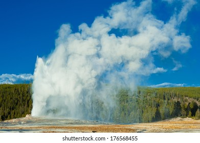 Yellowstone National Park in Wyoming is one of my favorite parks you can find in that area. The animals, the landscape, the geysers. I could spend days there shooting if I would have had the time.