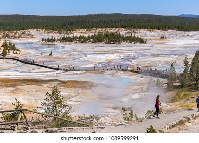 YELLOWSTONE NATIONAL PARK, WYOMING, USA, AUGUST 18th 2018: Boardwalk with tourist at Norris Geyser, the hottest Geyser Basin in Yellowstone National Park.