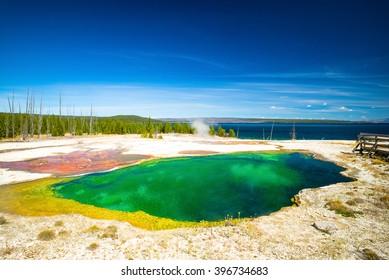 Yellowstone National Park, Wyoming, USA.  Prismatic spring.  Norris Geyser Basin, Upper Geyser Pool.