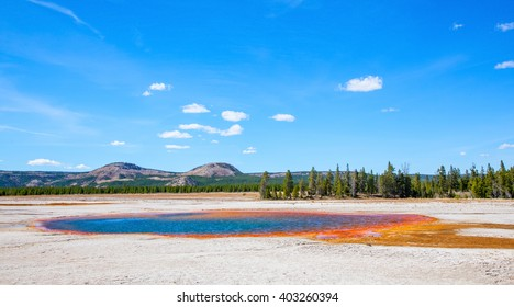 Yellowstone National Park, Wyoming, USA.  Pool at the Grand Prismatic Springs against a sunny blue sky.
