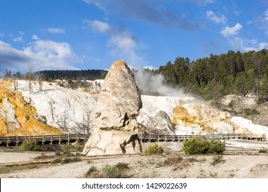 Yellowstone, USA - June 5, 2019: The Liberty Cap, a dormant hot spring cone at Mammoth Hot Spring, Yellowstone National Park, USA
