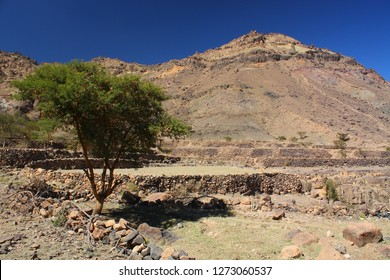 Yemen, surrounding area of Sanaa