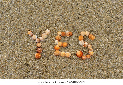 Yes sea shells sign on the sand beach