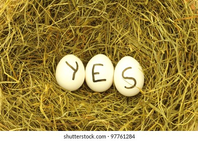 yes written on eggs in green hey or straw