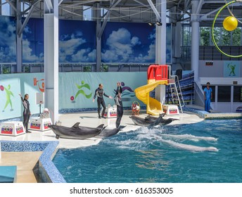 YEVPATORIYA, CRIMEA - JULY 13, 2014: Dolphinarium in Yevpatoriya. Spectacular show with dolphins.